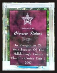 In Recognition of Your Support of the Hillsborough County Sheriff Canine Unit 1 2007 Award